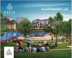 سيليا العاصمة الإدارية الجديدة